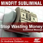 Spend Less Money Subliminal Message MP3 Download